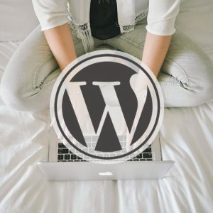 Wordpress Maintenance Package